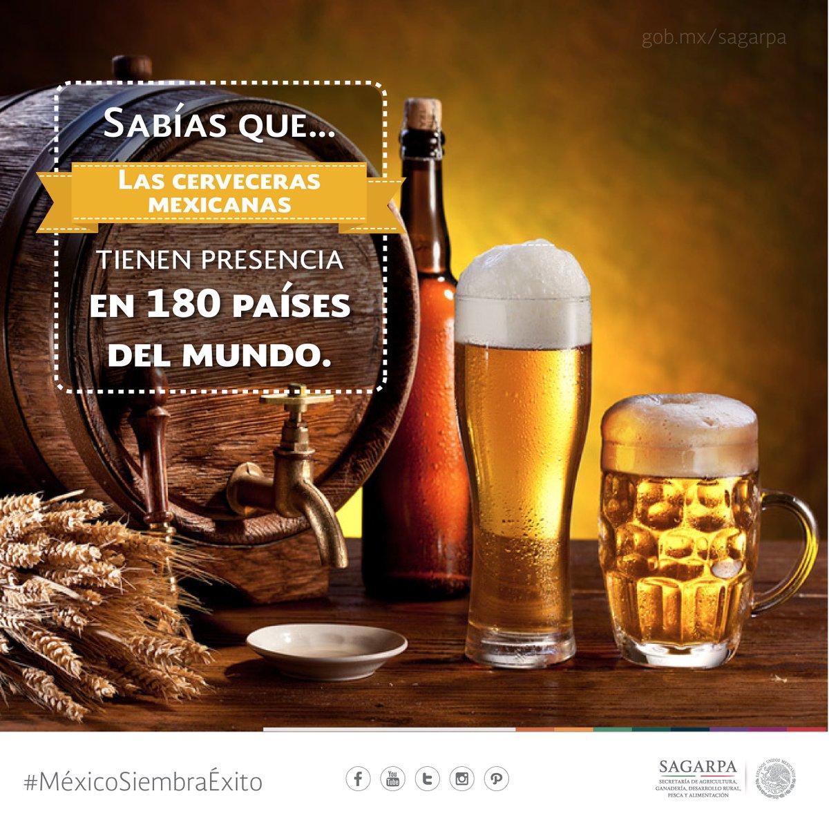 La cerveza mexicana reina en el gusto internacional